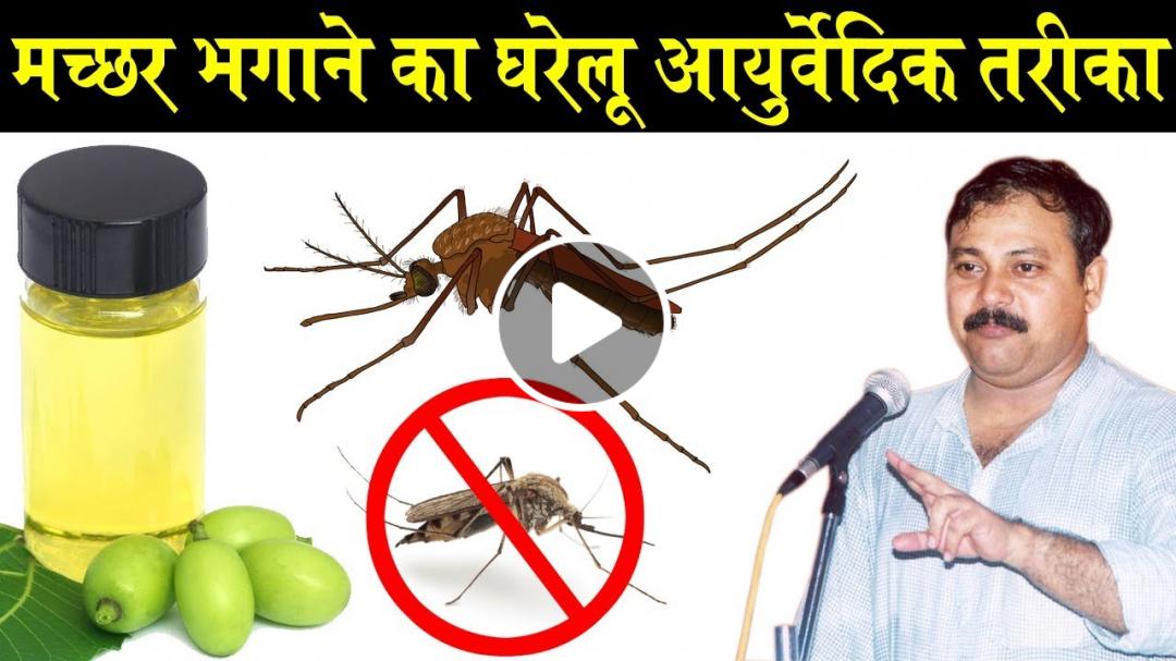 Rajiv Dixit - मच्छर भगाने का आसान और घरेलू तरीका - Mosquito Solution | Home Remedies
